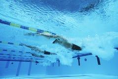 Participantes que compiten con en piscina Imagenes de archivo