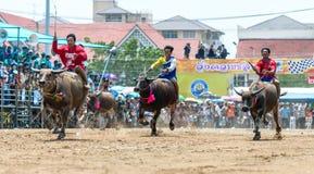 Participants buffalo racing festival run. Chonburi - OCTOBER 07 : Participants buffalo racing festival runs in 143th Buffalo Racing Chonburi 2014 on October 07 Royalty Free Stock Photo