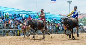 Participants buffalo racing festival run. Chonburi - OCTOBER 07 : Participants buffalo racing festival runs in 143th Buffalo Racing Chonburi 2014 on October 07 Royalty Free Stock Images