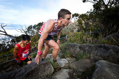 Participants climbing up Mt Kinabalu in race Royalty Free Stock Photo