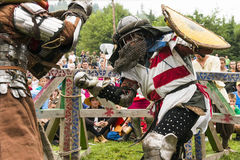 Participants of the festival in knight armor arrange fights Stock Images