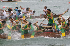 Participants paddle their dragon boats. TUEN MUN, HONG KONG - JUNE 16: Participants paddle their boats during a dragon boat race on June 16, 2010 in Tuen Mun Royalty Free Stock Photo