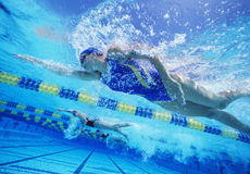Participants professionnels féminins emballant dans la piscine Image stock