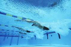 Participants Racing In Pool. Underwater view of professional participants racing in pool Stock Images