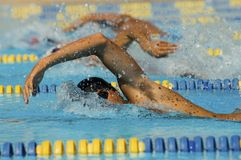Participants In Swimming Race. Male participants competing in a swimming race Stock Images
