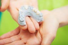 Participation de main de dentiste du modèle de mâchoire des dents et du nettoyage dentaires avec l'outil dentaire Tirs techniques photos libres de droits