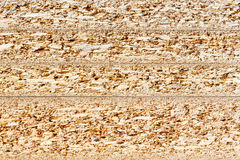 Particle board cross section texture Royalty Free Stock Photos