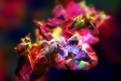 Particles of colored fume in air, 3d illustration Royalty Free Stock Photos