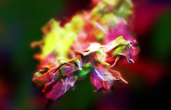 Particles of colored fume in air, 3d illustration Stock Photo