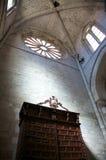 Particolare all'interno della cattedrale di Tudela Fotografie Stock Libere da Diritti