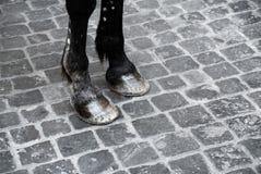 Particolare dei piedini del cavallo Fotografie Stock Libere da Diritti