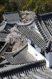 Particolare del castello di Himeji, Giappone Fotografia Stock