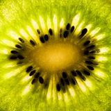 Particolare del Kiwifruit Immagini Stock Libere da Diritti