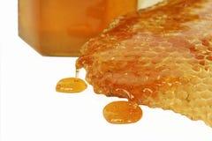 Particolare del miele dell'ape Fotografia Stock