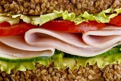 Particolare del panino Fotografia Stock