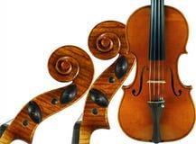 Particolare del violino Fotografia Stock Libera da Diritti