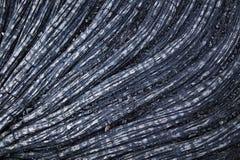 Particolare della lava della corda, Hawai Immagine Stock Libera da Diritti