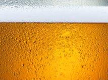 Particolare delle gocce della birra su vetro Immagini Stock