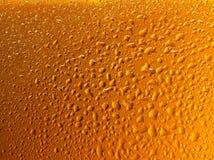 Particolare delle gocce della birra su vetro Fotografie Stock Libere da Diritti