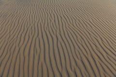Particolare delle righe in duna di sabbia Fotografie Stock Libere da Diritti