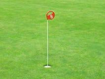 Particolare di un terreno da golf Immagini Stock Libere da Diritti