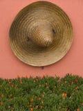 Particolare messicano Fotografie Stock
