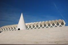 Particolare Museu de les Ciencies Principe Felipe. Immagini Stock Libere da Diritti