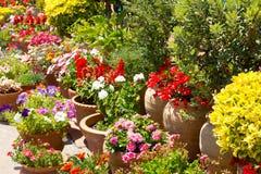 Particolare spagnolo del giardino di fiori in spagna Fotografie Stock
