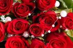 Particolare sulle rose rosse Fotografie Stock Libere da Diritti