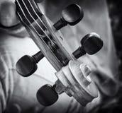 Particolari del violino Fotografie Stock Libere da Diritti