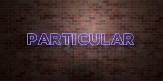 PARTICULAR - fluorescent Neon tube Sign on brickwork - Front view - 3D rendered royalty free stock picture. Can be used for online banner ads and direct Royalty Free Stock Images