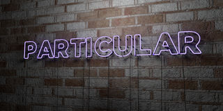 PARTICULAR - Glowing Neon Sign on stonework wall - 3D rendered royalty free stock illustration. Can be used for online banner ads and direct mailers Stock Photography