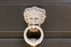 Particularly embossed lion-shaped metal Royalty Free Stock Images