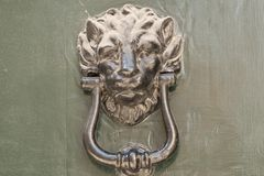 Particularly embossed lion-shaped metal Stock Photography
