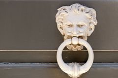 Particularly embossed lion-shaped metal Stock Image