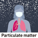Particulate matter and face mask, PM2.5,  image illustration Royalty Free Stock Image