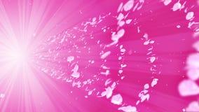 Particule brillante en spirale des fleurs de cerisier Sakura Pattern Danse japonaise de cerise Vortex de pétale rose Animation ab clips vidéos
