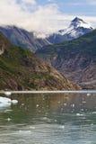 Partida de Alaska Fotos de archivo libres de regalías