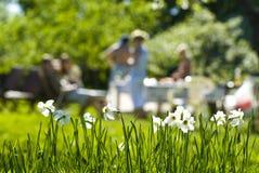 Partido al aire libre del verano Fotografía de archivo libre de regalías
