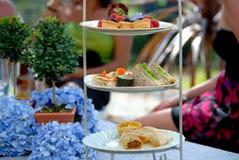 Partido de almoço Imagens de Stock Royalty Free