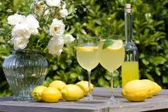 Partido de cocktail Imagens de Stock Royalty Free