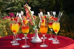 Partido de cocktail ao ar livre Fotografia de Stock Royalty Free