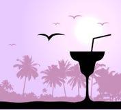 Partido de Coctail en la playa Imagen de archivo libre de regalías