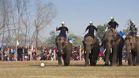Partido de fútbol - festival del elefante, Chitwan 2013, Nepal Fotografía de archivo libre de regalías