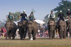 Partido de fútbol - festival del elefante, Chitwan 2013, Nepal Imágenes de archivo libres de regalías