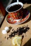 Partido de té Foto de archivo libre de regalías