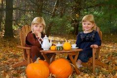 Partido de té al aire libre Fotos de archivo