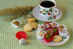 Partido de té del día de fiesta Fotografía de archivo