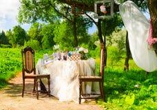 Partido de té en parque Imagen de archivo