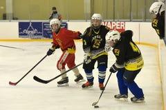 Partido del hockey sobre hielo de las muchachas Fotos de archivo libres de regalías